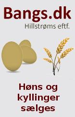 Bangs.dk
